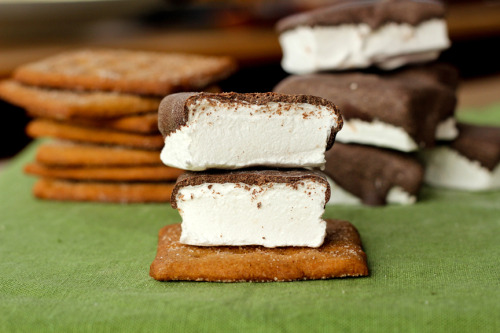 Homeade Graham Crackers and Chocolate Dipped Marshmallows