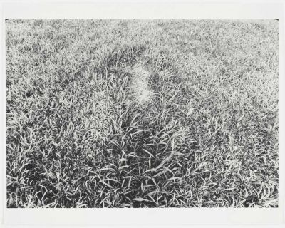 Ana Mendieta, Untitled (Silueta Series, Iowa), c. 1978