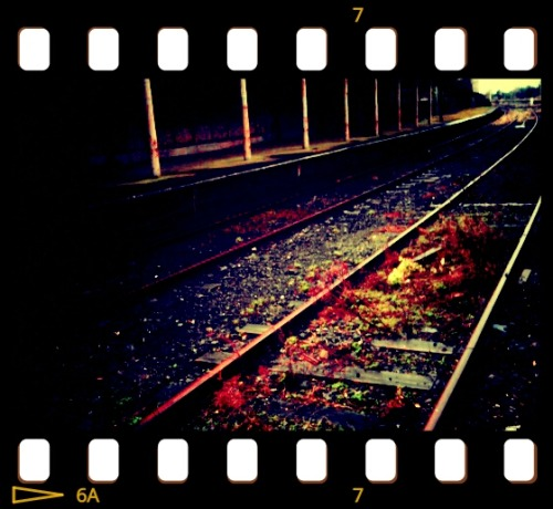 Blood on the tracks.