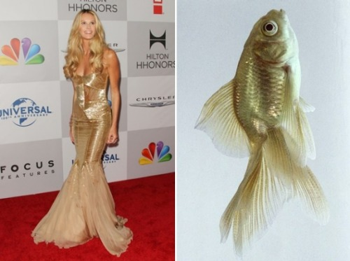 Fish tail dresses vs. fishes. Because you can't work Ryan Gosling into every great slideshow.