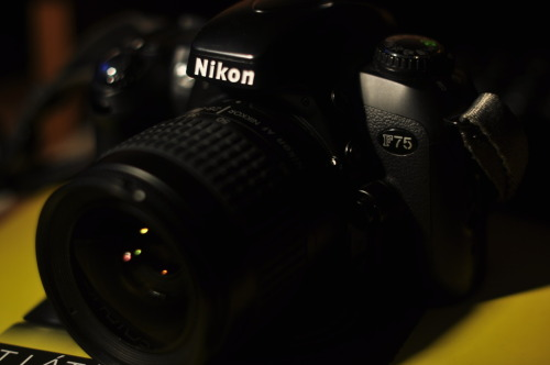 Today I've bought my first film camera, a brand new Nikon F75 with a Nikkor 28-80mm AF-D lens. Awwwwwwwwwwsome(: