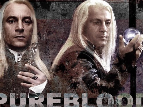"fuckyeahsexylucius:  ""THE Pureblood…"""