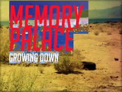 Cover art I designed for the band Memory Palace. The photo was taken by me with a Pentax PZ-10. For full size image, click here. To listen to Memory Palace, click here.