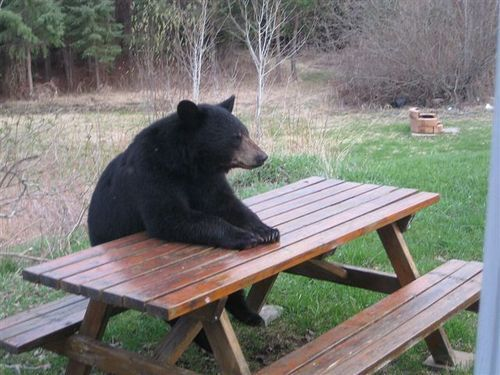 how i feel when im waiting for some food…