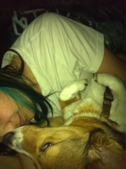 Always keeping me warm. Such a sweet dog. :3