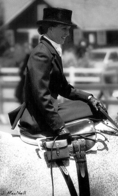Sidesaddle Elegance on Flickr.