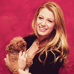 Picture from a photoshoot of Blake Lively and her beautiful little brown maltipoo poodle. Adorable, isn't it?