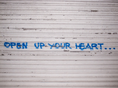 terrysdiary:  OPEN UP YOUR HEART…