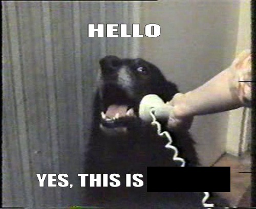 michaelorell:  GODDAMNIT SOPA WHO IS ON THE PHONE!!  YES, HELLO? WHO IS THIS?