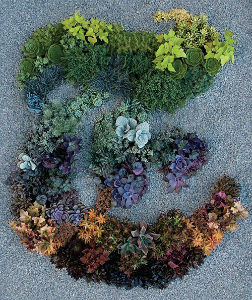"yellowtrace:  Garden designer Judy Kameon created this beautiful ""T"" for New York Times' T Magazine using 130 plants."