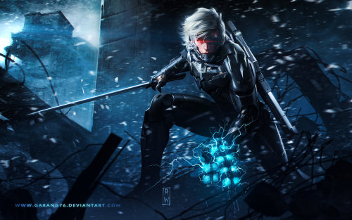 snakelinksonic:  Raiden Metal Gear Revengeance Tribute by ~garang76