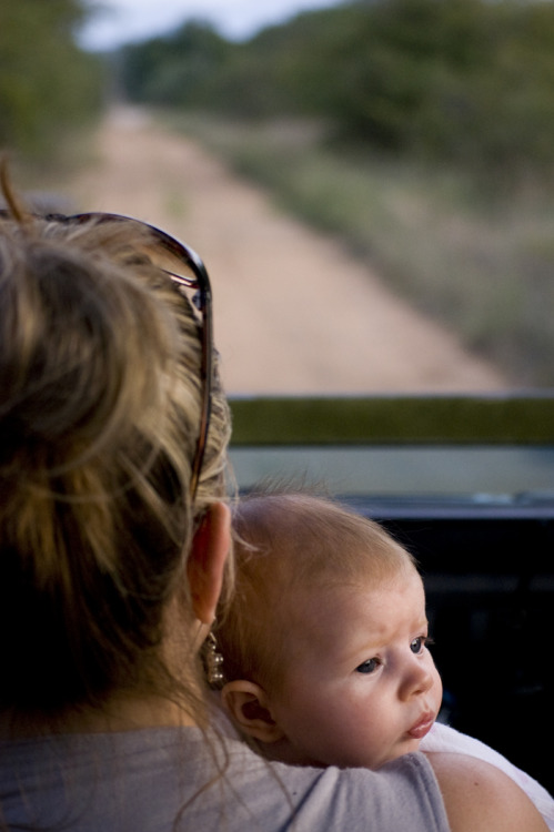 Mia on her first game drive Photograph: Christopher Mullaney