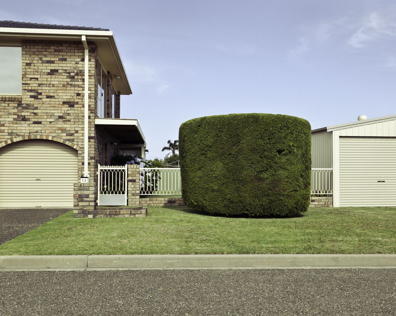 Hedge work Ulladulla, NSW