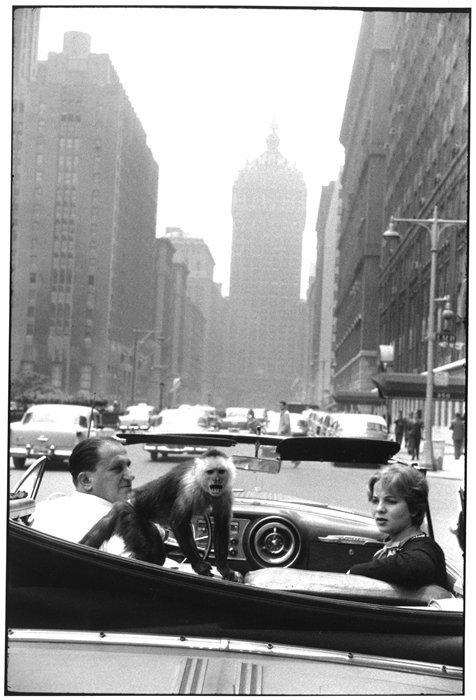 2headedsnake:  all-art.org  Garry Winogrand - Park        Avenue, New York, 1959