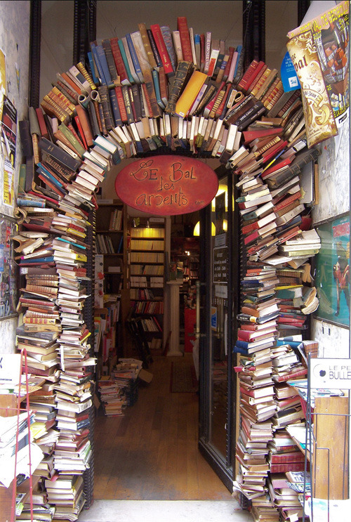 bookmania:  Le Bal des Ardents in Lyon, France (photo by Isa)