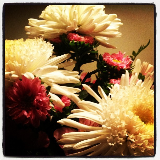 Birthday flowers! (Taken with instagram)