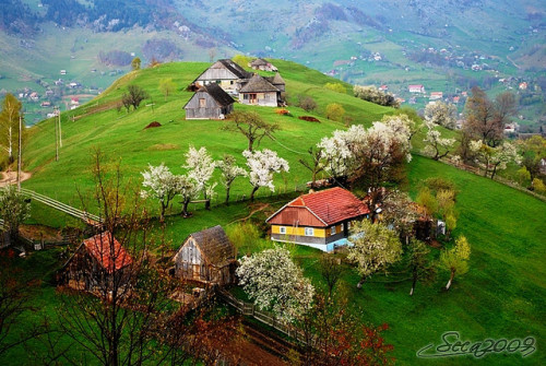 fairytale-europe:  Peştera, Romania