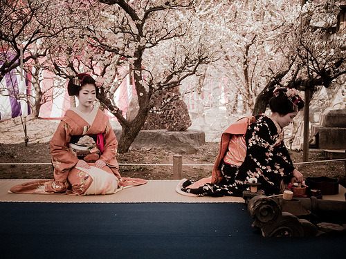 yokosojapan:  tea ceremony (by yocca)