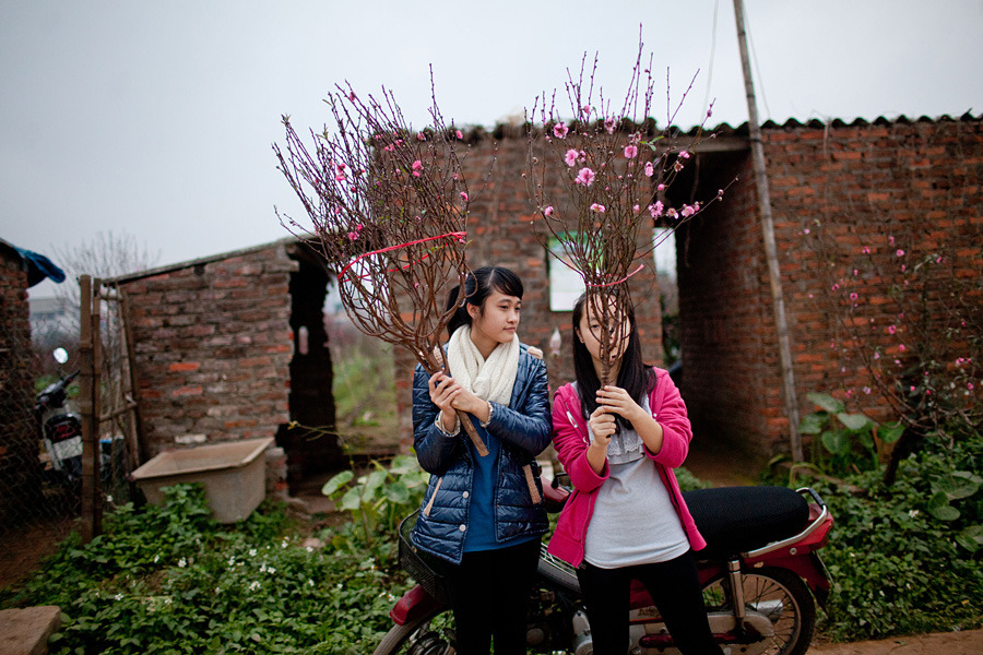 Shoppers buy peach blossom trees and branches in the days leading up to Tet Lunar New Year in Hanoi, Vietnam, on Thursday, Jan. 19. Photograph by Justin Mott/Bloomberg