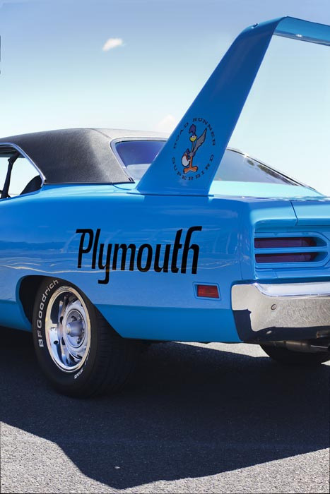 Superbird WingShot by leigh garipidis