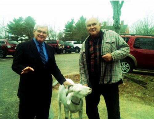 Newt hanging out with a goat