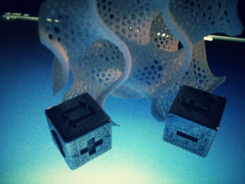Photo of Tumblr Dice at Shapeways NYC January Meetup