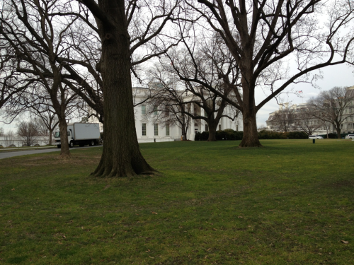 The rear of the White House.   Pennsylvania Ave NW at 15th.