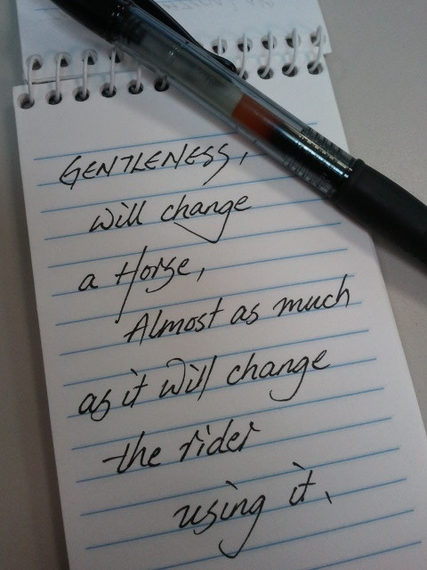 Gentleness will change a Horse almost as much as it will change the rider using it.