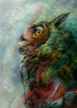 derriere-un-masque:  Technicolor Dream Owl by Ethan T Melazzo