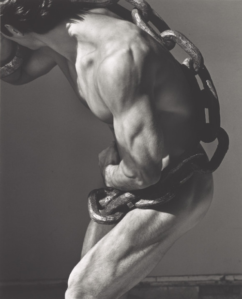 devidsketchbook:  Photographer Herb Ritts