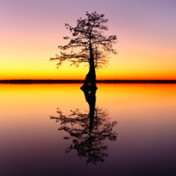 Last Light Lake Drummond by Elijah Goodwin