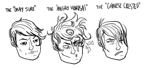 stages my hair goes through during various amounts of humidity