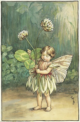 White Clover Fairy from Flower Fairies of the Summer. A small girl fairy stands holding two white clover flowers.