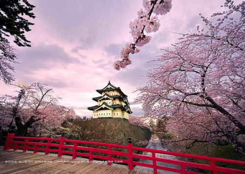 Hirosaki Castle. Wow! (Explored) This image 9,500 visits. Thank you. by Glenn Waters ぐれんin Japan. on Flickr.