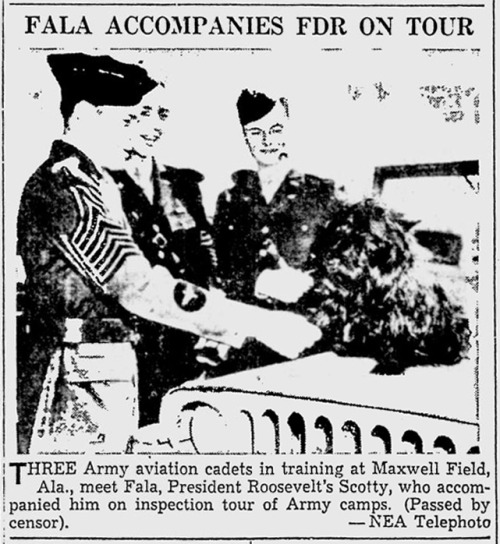 Fala Accompanies FDR On Tour Three Army aviation cadets in training at Maxwell Field, Ala., meet Fala, President Roosevelt's Scottie, who accompanied him on inspection tour of Army camps. (The Southeast Missourian, April 21, 1943)