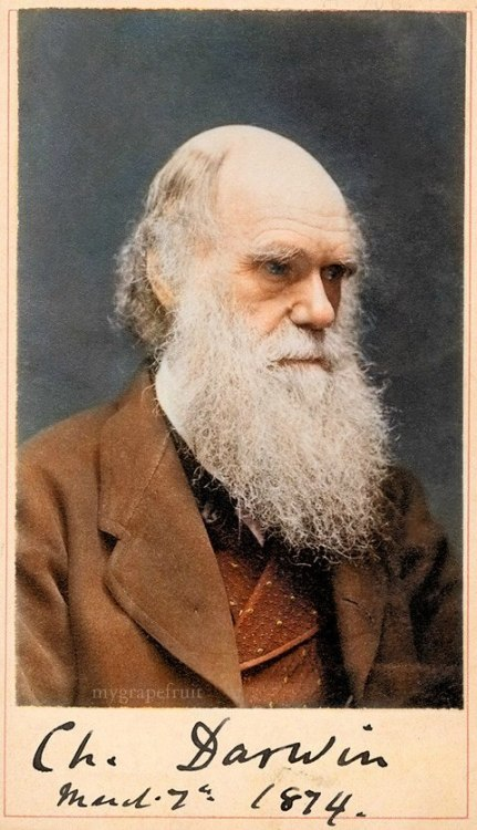 migeo:  There wasn't much color photography in Darwin's day, so all the photos we have of him are in black and white (or sepia). Here's a site with some skillful retouching of old photos to add color…and a new version of a familiar image. (vía Pharyngula)  Very nice.