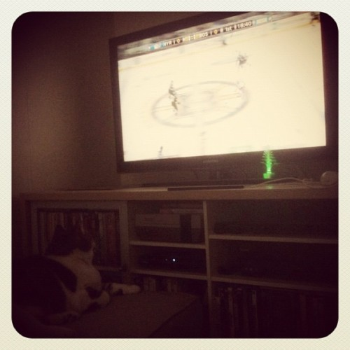 Ellie is watching the #Bruins with me. (Taken with instagram)