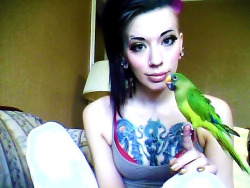 New followers, this is my bird King Leonidas. He hates everyone other than me. Also, he is regal as fuck.
