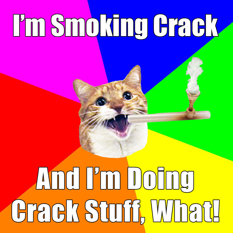 Mylo the Cat is smoking crack, and doing crack stuff, what!
