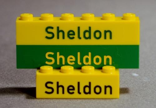 Engraved Bricks for Sheldon!
