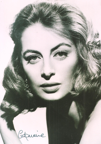 beautiful Capucine