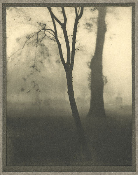 Kensington Gardens, November Coburn, Alvin Langdon, b.1882-1966 London, 				1910 17 x 22.6 cm Photogravure
