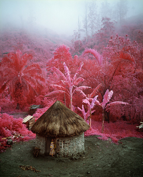 Aerochrome photographs of the Congo | Richard Mosse