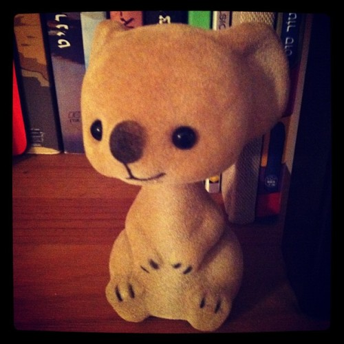A Bubu Doll? 😘🐨☀ (Taken with instagram)