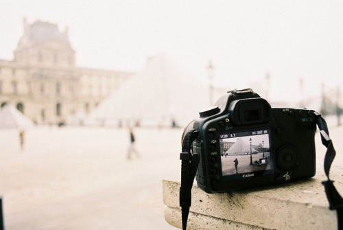 nothing-on-you:  Camera is in the camera by vic xia on Flickr.