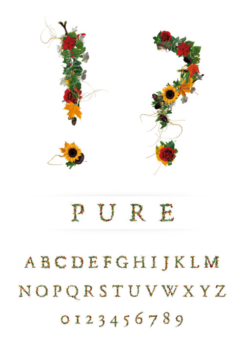 PURE by Novo Typo  This photofont is a collection of high resolution (21 x 29,7 cm - 300 dpi - cmyk) photoshop documents. Also available separately or words manually spaced by the Novo Typo designers.