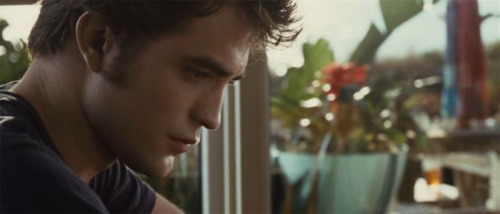 EDWARD, Y U NO SPARKLE? Edward went to Jacksonville, Florida with Bella. We never see him sparkle, not once. Yes he is indoors, but is clearly sitting in the sunlight. Edward also went to Brazil - twice. We never see him sparkle there, either. To be fair the first time we see him in Brazil it is a night shot in New Moon. But still, what an odd choice of retreat for a guy whose biggest fear is being seen in the sunlight. No sparkling in Breaking Dawn, either. My theory is that Edward's sparkles are somehow tuned into the Seattle Space Needle and if he gets outside of a certain radius they stop working.