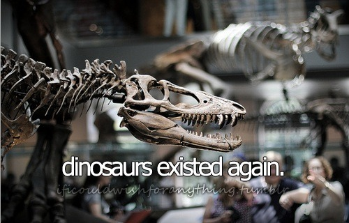 If I could wish for anything… I would wish dinosaurs existed again.