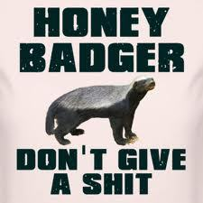 Oh yeah? well Honey Badger Doesnt give a fuck