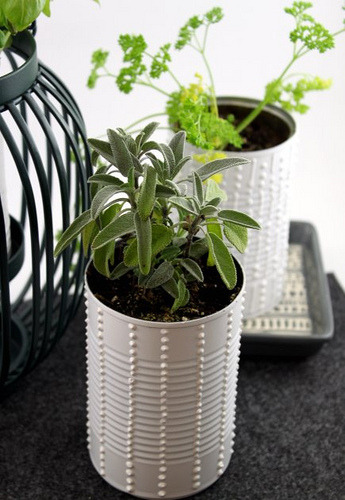 DIY Upcycled Herb Cans